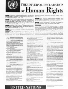la declaracion universal de derechos humanos dcbbadb